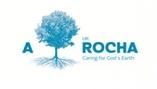Picture of blue tree in A Rocha logo
